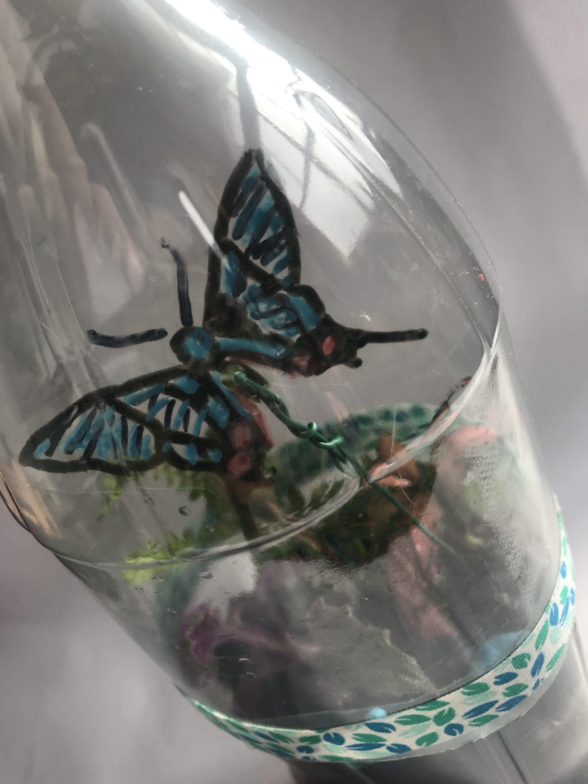 terrarium vlinder almelo